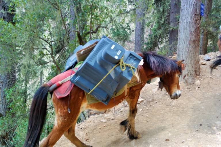 A horse with a TV tied to it, carrying it to the villagers in Yubeng, China